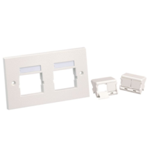 PANDUIT 86 X 146MM DOUBLE GANG FACE PLATE FRAME WITH 2 X  HALF SIZED SLOPED SHUTTERED MODULE INSERTS IN ARCTIC WHITE